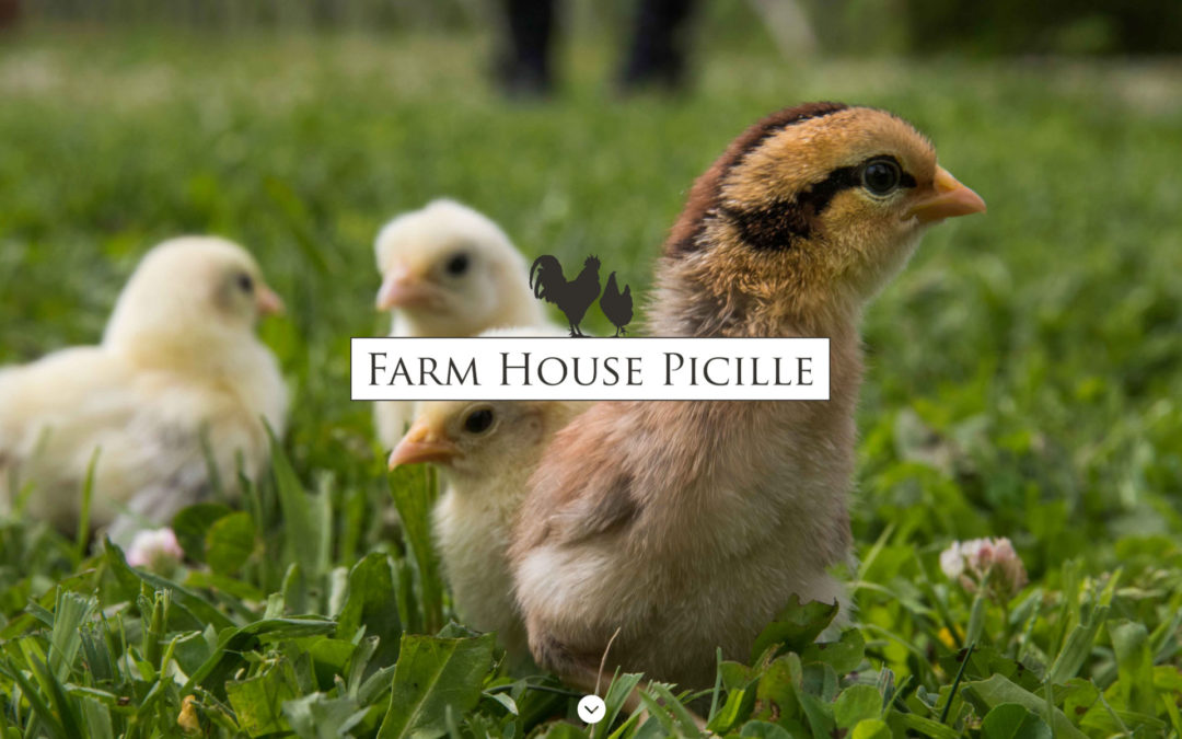 Farmhousepicille.it è online!
